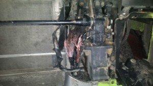 Рено сгорела проводка